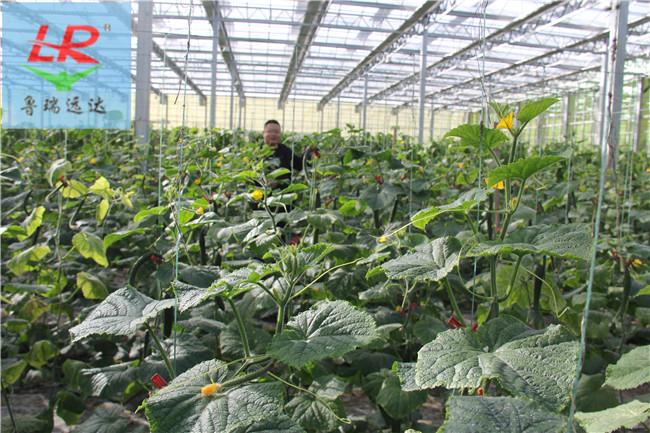 电解法二氧化氯发生器优惠力度大!抚顺望花