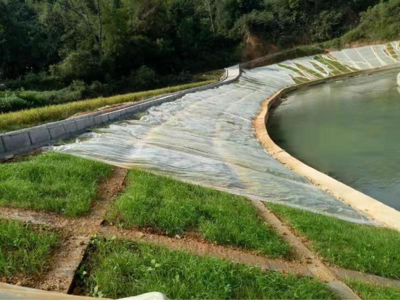 遵义生态混凝土添加剂多少钱