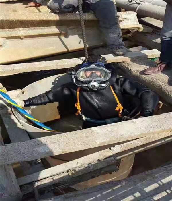 自貢 阿壩九寨溝污水轉運-運輸----承接各種市政工程