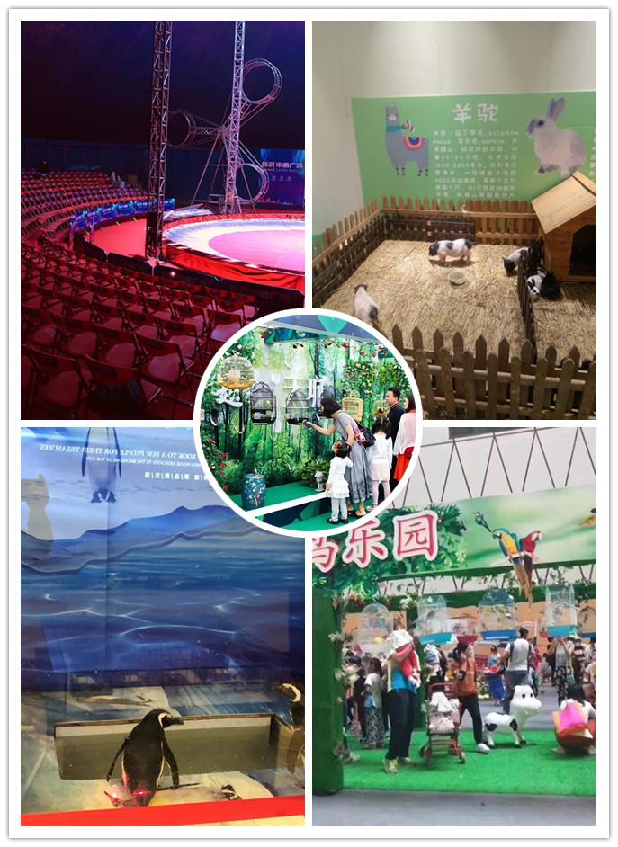浙江诸暨市海狮表演出租